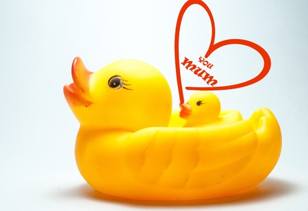 A Duck carrying its duckling and love symbol photo