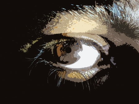 close up of an eye illustration cutout illustration