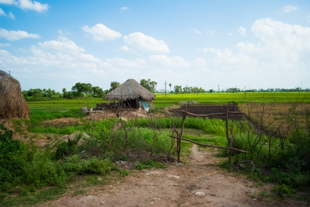 green fields and a hut in a rural location Stock Photo