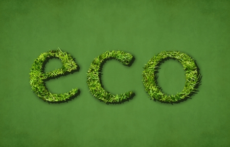 Caption eco  ecological  on green background Stock Photo - 15374567