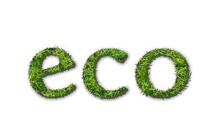 Caption eco  ecological  on white background Stock Photo - 15374588