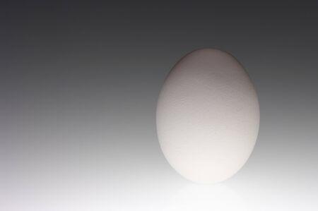 White raw egg