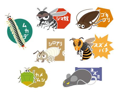 Set illustration name of various pests Vector Illustration
