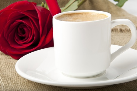 a rose and a cup of coffee photo