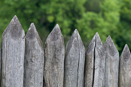 and the stakes: Fence stakes, a fence made of logs, tapered wooden stakes.