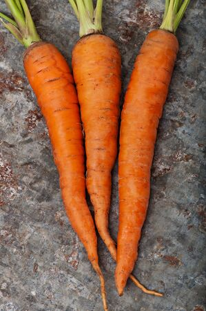 Ripe sweet carrots on a background of old iron, top view. Stock Photo