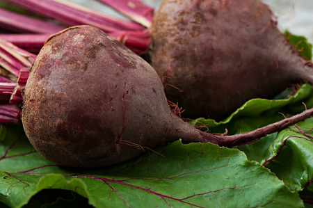 Beets on a background of old metal, vegetables.