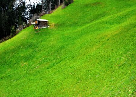 beautiful scenery of alps cottage in meadows photo