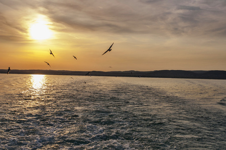 Sunset above ocean with waves and birds on the sky. Stock Photo