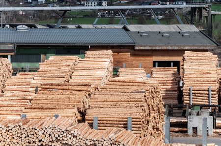Stock timber in saw mill. Loader working in saw mill. A lot of trunks, stack of wood lumber. Imagens