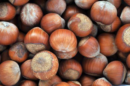 many hazeknuts very close up photo