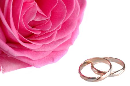pink rose with rings close up photo