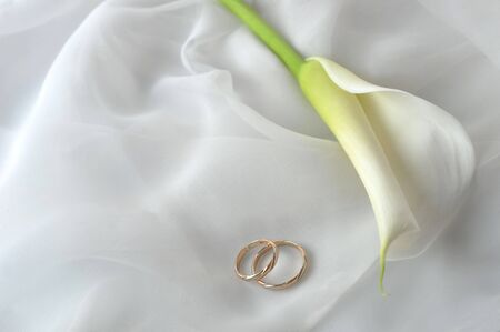 wedding photography: White transparent  fabric and wedding rings close up
