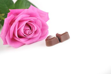 beautiful pink rose and chocolate  isolated close up photo