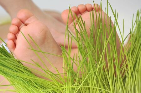 Foot of baby and  green grass photo