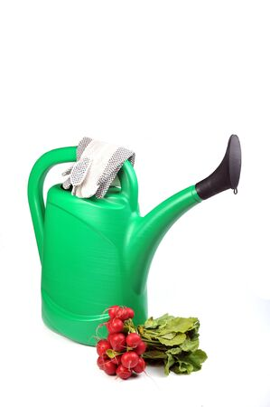 green watering can, rake , bunch of red radish  and working gloves photo