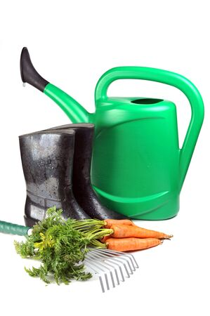 carrot and gardening tools: watering can, gloves and rubber boots  photo
