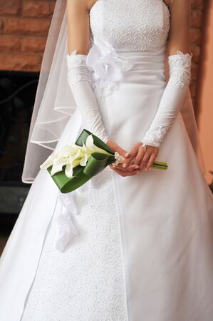 bride wearing wedding dress and  holding bouquet Stock Photo - 7128554