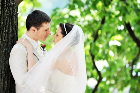 groom and bride in white dress on background of green trees Stock Photo - 7318869