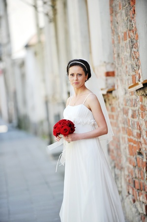 bride  for an old brick wall photo