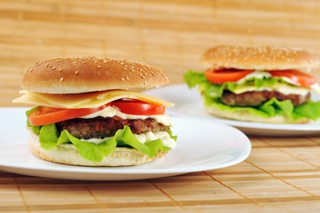 hamburger with cutlet and vegetables on dish Stock Photo - 9444296
