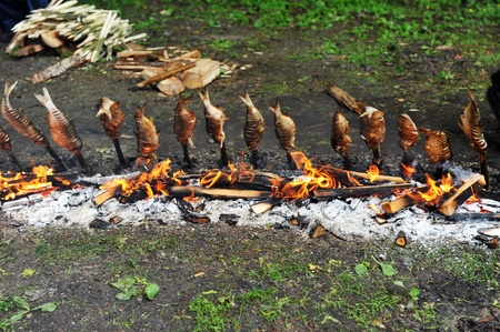 fish fixed on wooden chopsticks grilled of charcoal photo