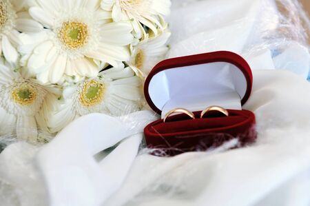 bouquet of white gerbera and wedding gold rings photo
