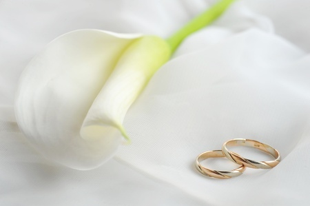 Trauringe und weiße Blume auf weißem Material Lizenzfreie Bilder