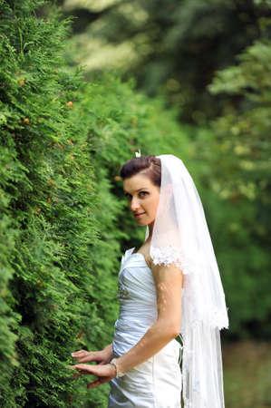 young bride walking on  sidewalk  near green bushes photo