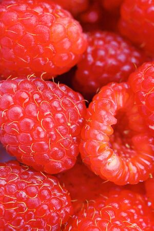 fresh and tasty rspberry close up photo