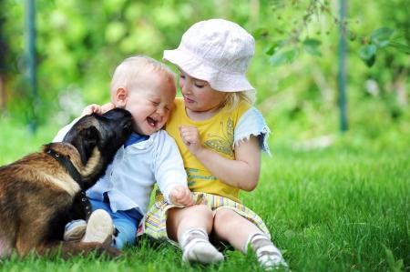 Mädchen und ihr kleiner Bruder spielt mit Hund auf Gras