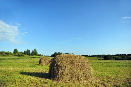 haystack on meadow. summer landscape of  countryside  photo