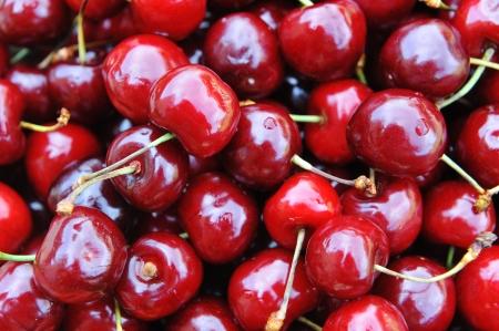 bing: Freshly picked heap of sweet  cherries Stock Photo