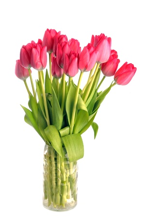 bouquet of many red tulips in glass vase