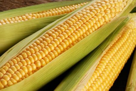 espiga de trigo: mazorca de ma�z entre hojas verdes Foto de archivo