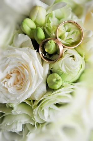 wedding  ring: los anillos de boda y rosas Foto de archivo