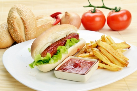 Tasty and appetizing  hot dog with fries on white plate photo