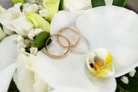 Close up on wedding bouquet and rings photo