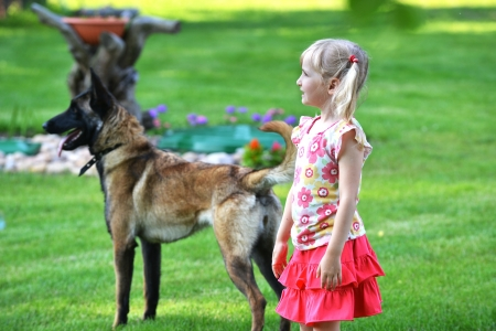 girl playing with dog on grass photo
