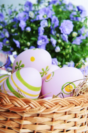 bloomy: blue campanula flowers  and easter eggs