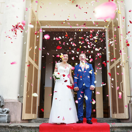wed: couple of newly wed showered with rose petals Editorial