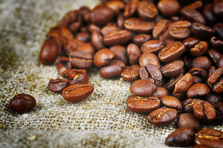 sacking: roasted coffee beans  on sacking, background