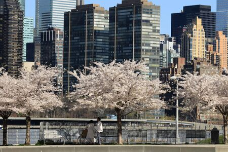 Spring in New York, view from LIC to Manhattan