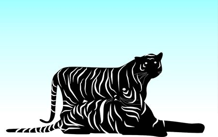 Silhouette of Couple of tigers photo