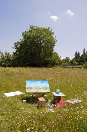 Painting in green field - this paint is my artwork photo