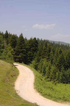 Rural landscapes with road set amongst the hills of the Golija National Park, Serbia Stock Photo - 505260
