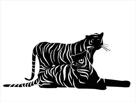 puma: Tigri  Vettoriali