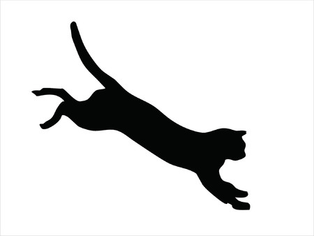wild cat jumping Vector
