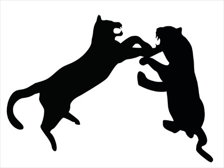 Illustration of wild animal, family of cats Illustration