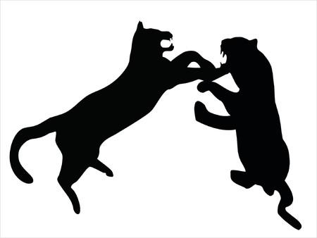 puma: Illustrazione di animali selvatici, la famiglia dei gatti